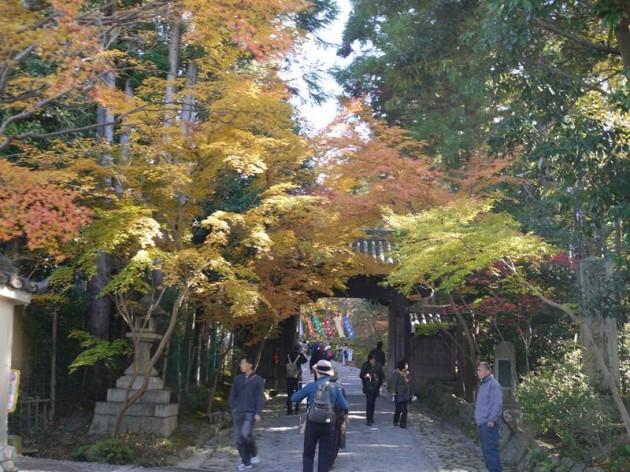 赤山禅院へ続く道