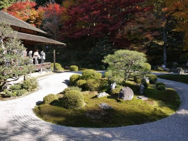 曼珠院の庭