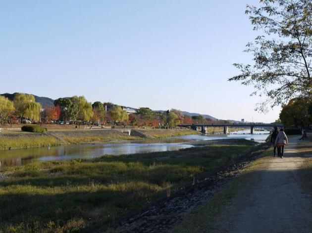 鴨川と紅葉