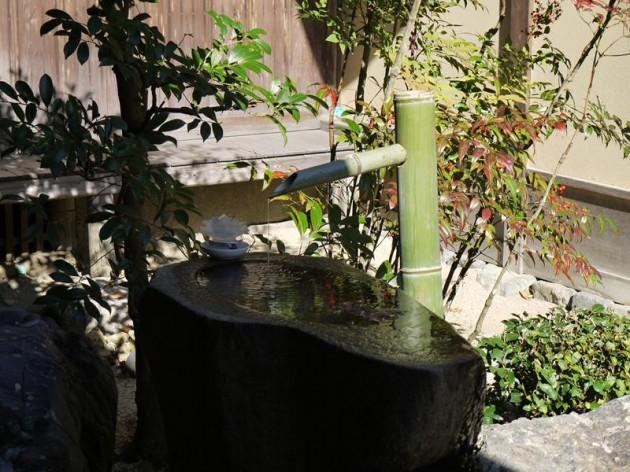 曼殊院の庭